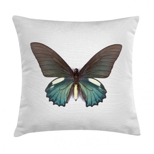 Knuffelkissen Schmetterling