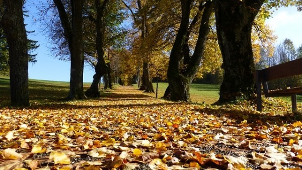 Blog-Herbst-15092017